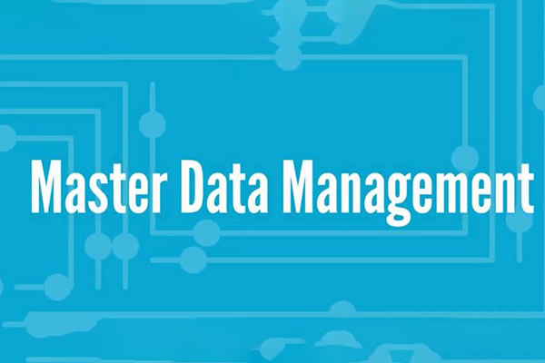 L'état de l'art des MDM (Master Data Management)