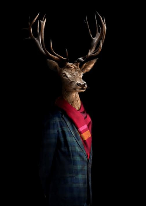 Second Skins – Retrato 46