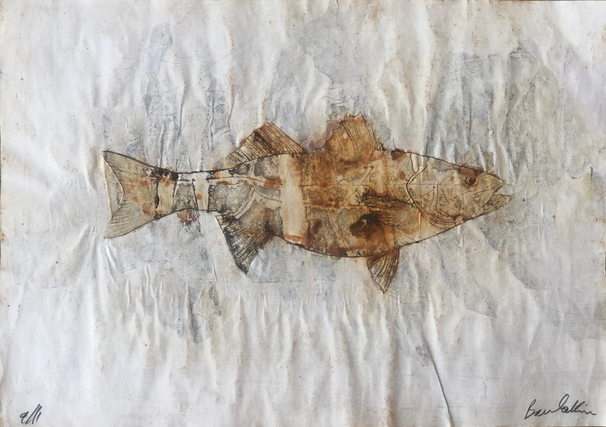 Untitled Fish1 by Philippe Boulakia 29.5X41.5 cm