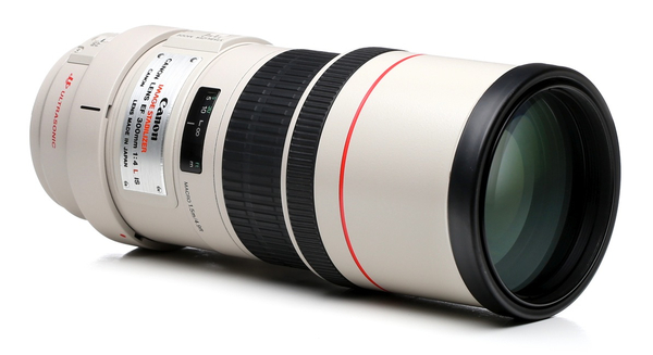 Canon 300mm f 4l is