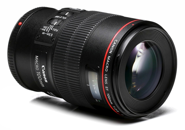 Canon 100mm f 2.8l macro is