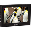 "Ikan VL5 5"" HDMI Field Monitor (Stock)"