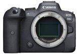 Canon EOS R6 Mirrorless