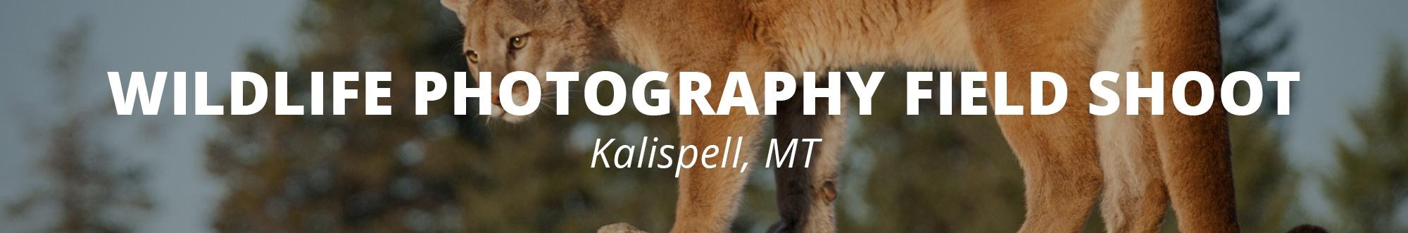 RMSP Wildlife workshop