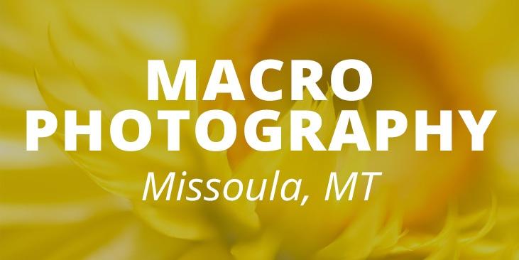 mobile-macro-banner