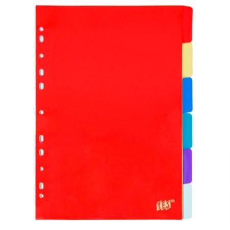 Divisória colorida - com 6 projeções - 6TBB - Yes