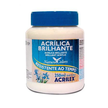 Tinta acrílica brilhante Branco 250ml - 519 - Acrilex