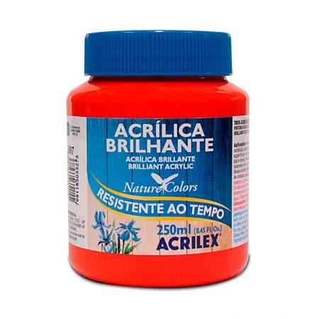 Tinta acrílica brilhante Vermelho Fogo 250ml - 507 - Acrilex