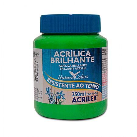 Tinta acrílica brilhante Verde Folha 250ml - 510 - Acrilex