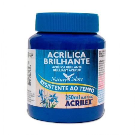 Tinta acrílica brilhante Azul Turquesa 250ml - 501 - Acrilex