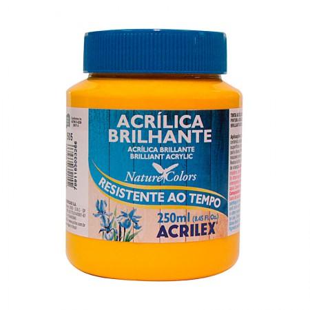 Tinta acrílica brilhante Amarelo Ouro 250ml - 505 - Acrilex