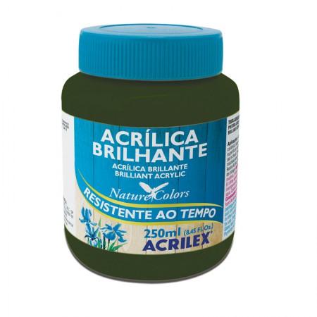 Tinta acrílica brilhante Verde Oliva 250ml - 545 - Acrilex