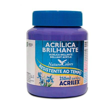 Tinta acrílica brilhante Violeta 250ml - 516 - Acrilex