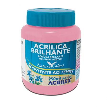 Tinta acrílica brilhante Rosa 250ml - 537 - Acrilex