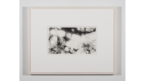 "Nene Humphrey, ""Slowspin Frame 3:04"", 2017, charcoal on paper, 13 x 17 inches.... Image #1027"