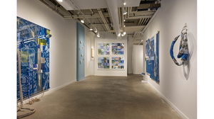 Fran Siegel: Superimposition (installation view 2)
