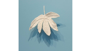 "Fran Siegel, ""Porcelain Leaf 05"", 2017, hand-built porcelain, brass wall mount, 8 x 9 x 5 inches"
