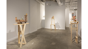 Jim Osman: The Walnut Series (installation view). Image #1377