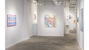 Tony Ingrisano: The Map and The Territory (installation view). Image #1389
