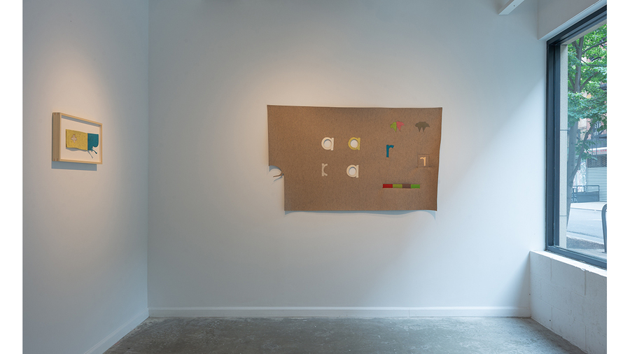Cyrilla Mozenter: See Why (installation view, Lesley Heller Gallery, New York)