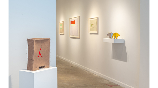 Cyrilla Mozenter: See Why (installation view, Lesley Heller Gallery, New York). Image #1480
