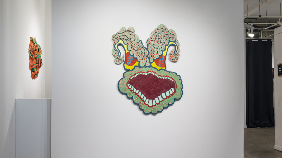 Daniel Wiener: Wide-Eyed and Open Mouthed (installation view)