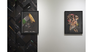 Paul Loughney: Confetti of the Mind (installation view). Image #1586