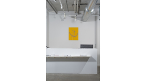 Splotch (installation view, Lesley Heller Workspace, New York). Image #181