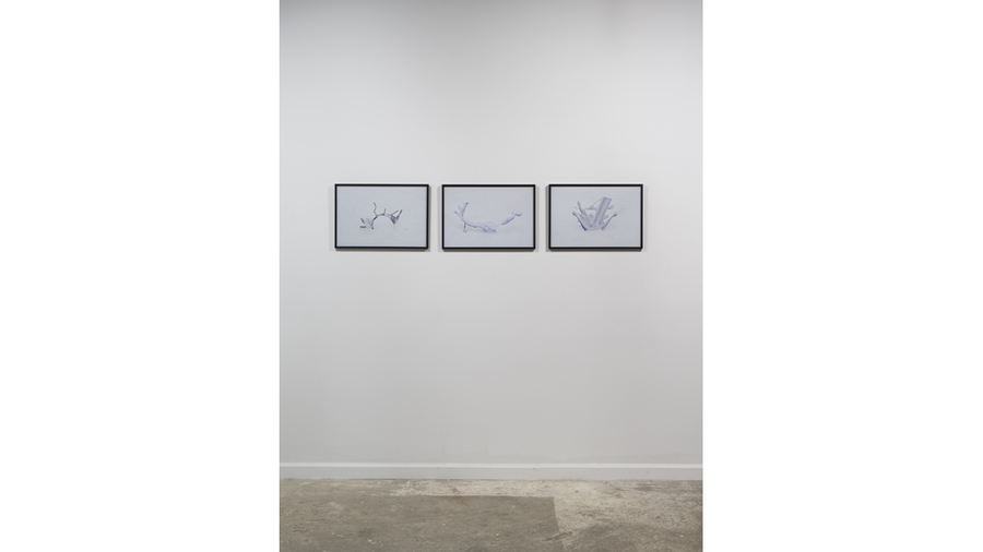 Splotch (installation view, Lesley Heller Workspace, New York)