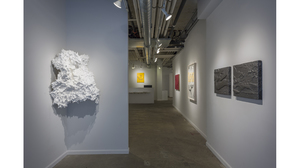 Splotch (installation view, Lesley Heller Workspace, New York). Image #202