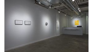 Splotch (installation view, Lesley Heller Workspace, New York). Image #204