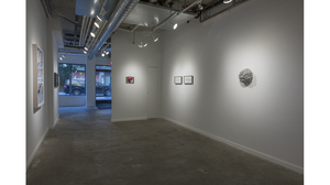 Splotch (installation view, Lesley Heller Workspace, New York). Image #206