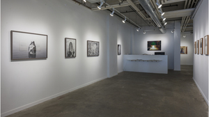 The Photo Show (installation view) . Image #563