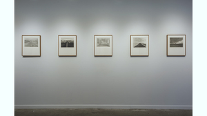 The Photo Show (installation view) . Image #564