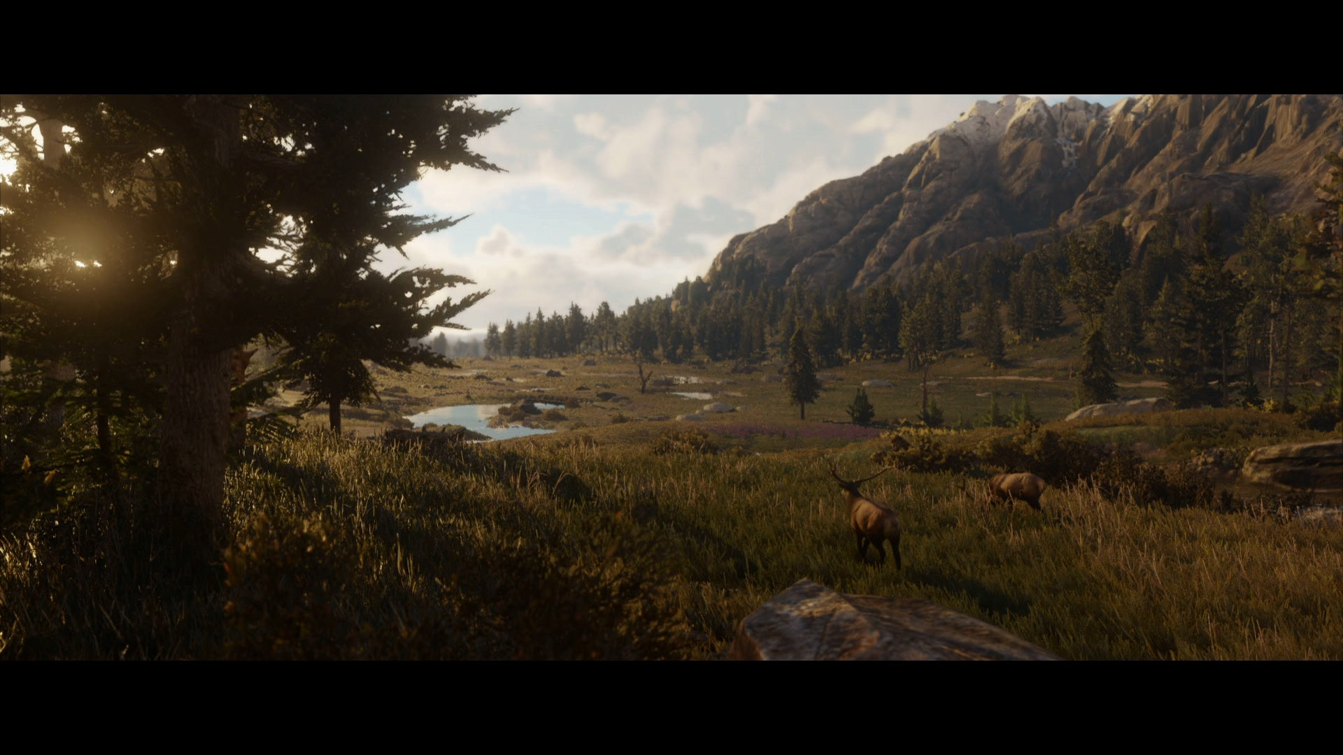 It's clear that wildlife will be a huge part of Red Dead Redemption 2