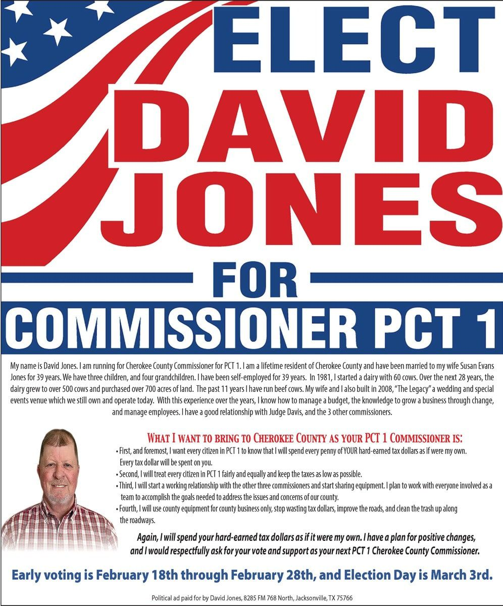 David Jones Political