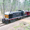Photo: Becky Whisenant One of the Texas State Railroad's rides crosses Fairchild Hill just outside of Maydelle. The TSR kicked off its season March 4 and ticket sales are available now for upcoming rides. For more information or for tickets, call (903) 683-3098 or visit TexasStateRR.com.