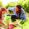 Gardening can be a great family activity and children exposed to the outdoors and gardening are more focused, have less issues with attention deficit and score higher on tests.