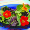 Add a bit of color and interest to salads with edible flowers like nasturtium.