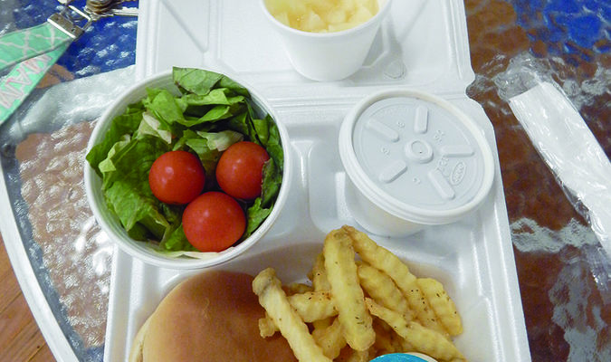 Photo by Josie Fox The barbecue sandwich meal includes a fresh side salad, seasoned fries and a generous helping of fresh fruit for dessert.