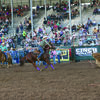 Photo courtesy Rodeo Bum Jayse Tettenhorst, heeler, is working to lasso the hind legs of a calf during a recent team roping event. Tettenhorst was teamed with Cash Palmore of De Kalb during the International Youth Rodeo, which kicked off July 7. The rodeo included 10 events over a six day period in Shawnee, Okla.