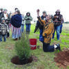 Photo by Cristin Parker Cherokee Nation representatives Ron (kneeling) and Emma Blackfield (shown with back turned) perform a Cherokee blessing on the site of the newly planted cedar tree, which symbolizes the regrowth and rejuvenation of the Caddo Mounds State Historic Site. Caddoan Elder Marilyn Threlkel (pictured behind Ron Blackfield) and others look on.