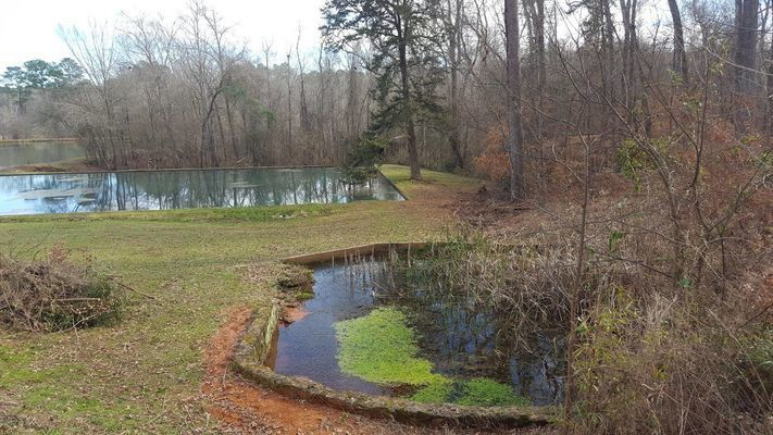 Courtesy photo Just one of the natural springs at Caddo Mounds State Historic Site near Alto.