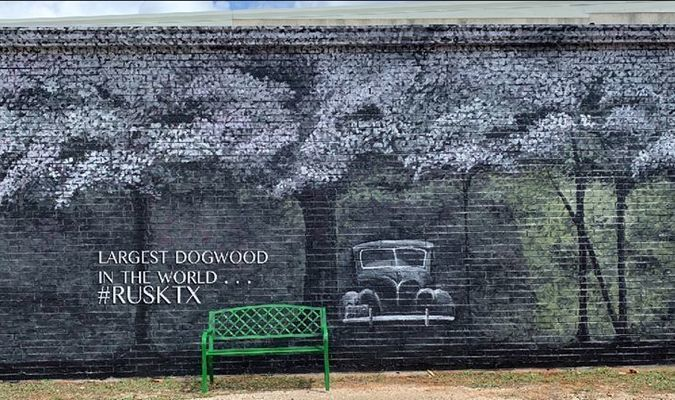 Judy Seamonds' finished dogwood mural at the Heritage Center of Cherokee County.
