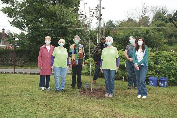 Green Thumb Garden Club members, Jane Stecker, Sue Wells Carol Moore and Martha Wells were in attendance. Also Shelly Knox (not pictured) Rebecca Iozzi, with Norton Parks and Recreation and David Rose, Josh Miles and Jeff Rose (not pictured) with the City of Norton Public Works Department who planted the tree.