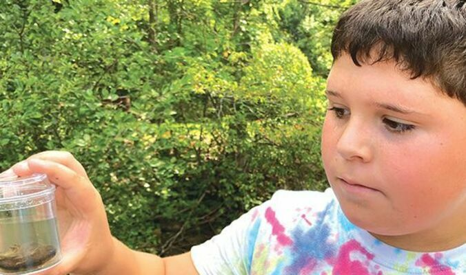 Owen McElroy and other Norton campers learned  'All About Bugs' during a summer day camp held at Clear Creek Park and Outdoor Classroom this week. This camp is an annual free event as part of Norton's summer camp series.