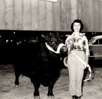Early 1950s, Joan Wilson Rodgers showcasing one of George and J.B. Wilson's prized Angus cows
