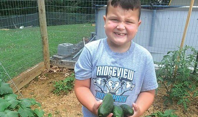 Robert Stanley with fresh cucumbers from his garden.