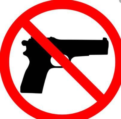 Handgun reported on Fulton County school bus