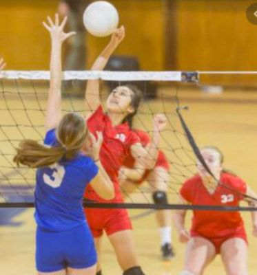 Volleyball program at South Fulton Middle School approved by School Board
